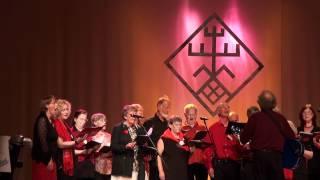 Festivāla BALTIKA 2012 ārvalstu grupu koncerts Madonas kultūras namā - 00026.MTS