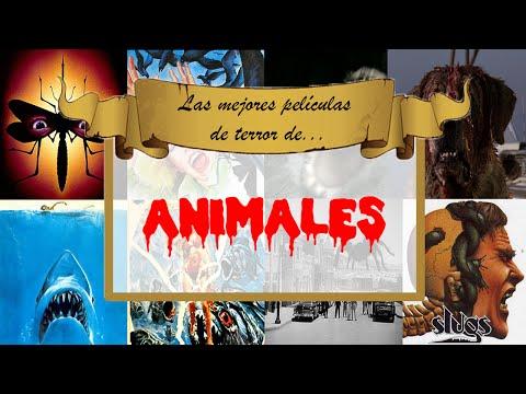 Las MEJORES películas de terror de... ¡ANIMALES!