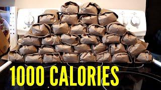 Backcountry Meal Ideas - EASY 1000 calorie breakfast