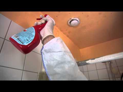Schimmel Verwijderen Muur : Digitale vakman schimmel verwijderen youtube