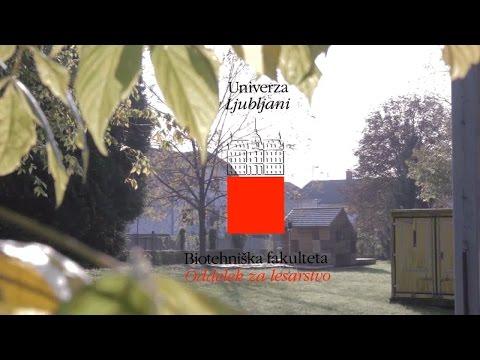 Univerza v Ljubljani, Biotehniška fakulteta, Oddelek za lesarstvo