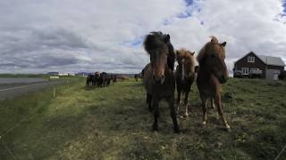 Iceland: A Virtual Journey in 360 thumbnail