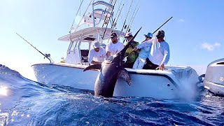 Near *QUARTER TON* Swordfish with Capt. Nick Stanczyk! Catch Clean and Cook