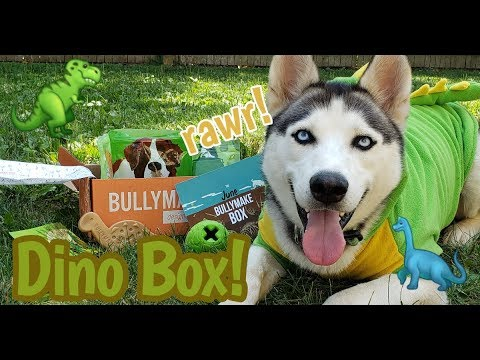 Dinosaur Themed Toy Unboxing with Mala-saurous-Rex | June Bullymake Box