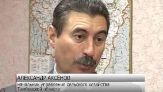 Тамбовчанам в развитии собственного хозяйства помогают государственные гранты. /НВ - Тамбов/