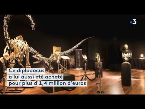 Hôtel des ventes Drouot : des squelettes de dinosaures aux enchères