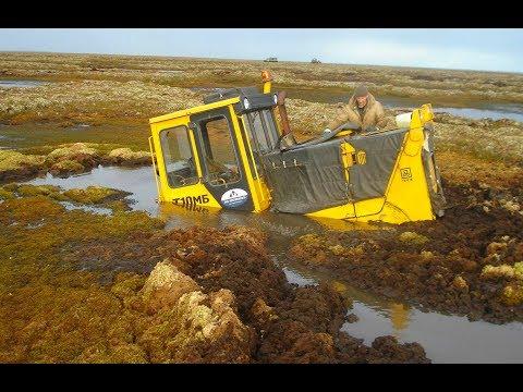 БУЛЬДОЗЕР Жёстко застрял ✅ БУЛЬДОЗЕРЫ в грязи, снегу На Бездорожье Тракторы по болоту