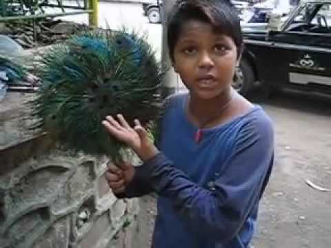 Indian Slum Kid Speaking 6 International Languages Including
