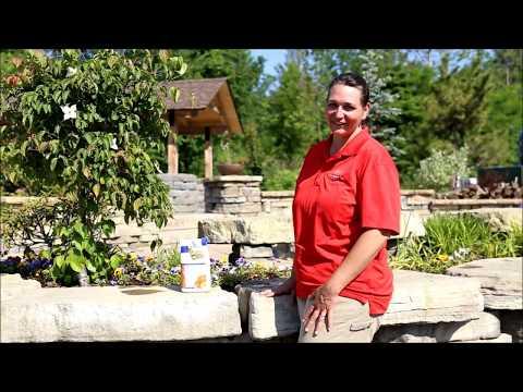 Holganix Bloom Organic Fertilizer for Annuals - Kalleco Nursery Corp.