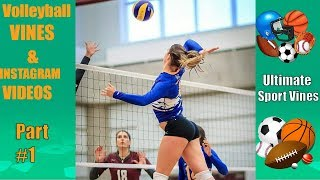 Best Volleyball Vines & Instagram Videos of January 2018 | Best Volleyball Moments 2018