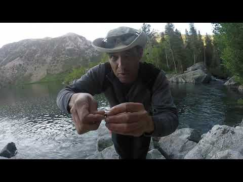 Catching Trout On Grasshoppers At Lake Sabrina (Fishing Tips)