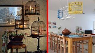 Lovely Creative Ideas Decorative Cage Decor Design