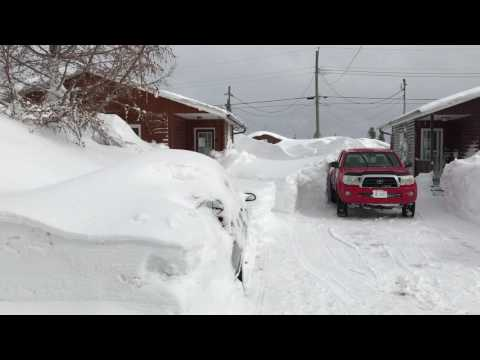 Incredible snow in Gander, Newfoundland and Labrador!