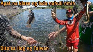 ANG DAMING ISDA SA ILOG NG TAIWAN DIKA UUWING LUHAAN