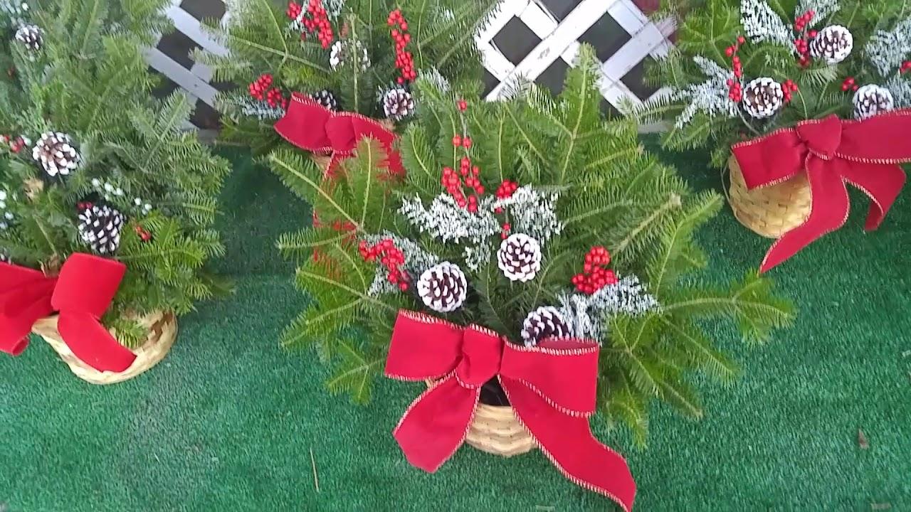 Nice wreaths