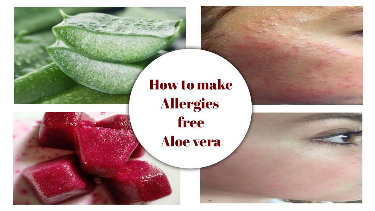 Download How to make Allergies Free Aloe Vera | Fair & Acne Free Skin.