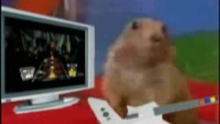 Dramatic Prairie Dog Guitar Hero thumbnail