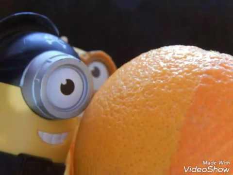 Minion discovery Orange!!
