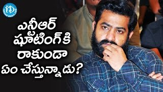 Reason Behind Jr NTR Avoids Shooting of His Next Project || Tollywood Tales