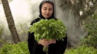 Al Ahsa: Om Al Nakheel (Mother of Palms)