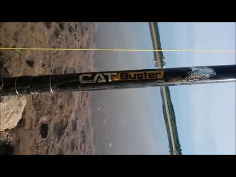 Cat Buster Rod Review