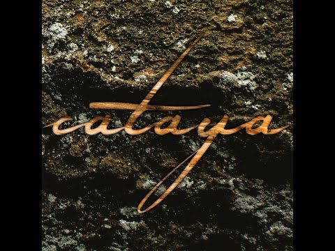Cataya - Sukzession (Moment of Collapse Records) [Full Album]