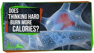Does Thinking Hard Burn More Calories?