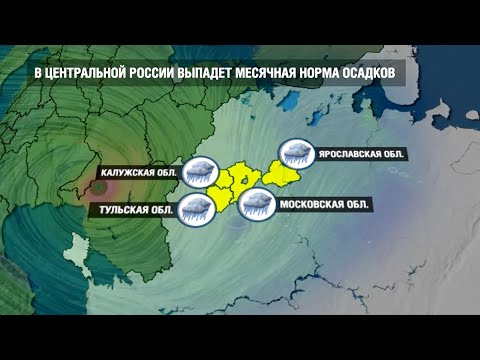 Порывистый ветер, гроза и град: службы Москвы готовятся дать отпор стихии
