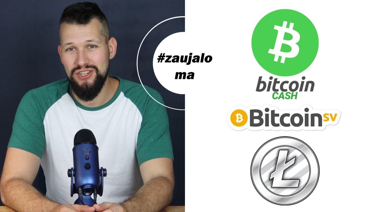 Najväčšie kryptomeny: Bitcoin Cash, Bitcoin SV a Litecoin (II. časť)