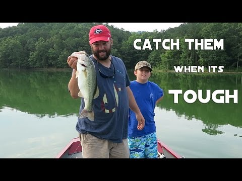 Thumbnail: Bass Fishing - Can't Get a Bite? Here's Three Ways To Catch Them