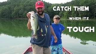 Bass Fishing - Can't Get a Bite? Here's Three Ways To Catch Them