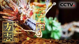 《中国影像方志》 第315集 浙江苍南篇| CCTV科教