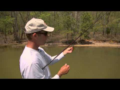 Patagonia bedded bass doovi for Bed fishing for bass
