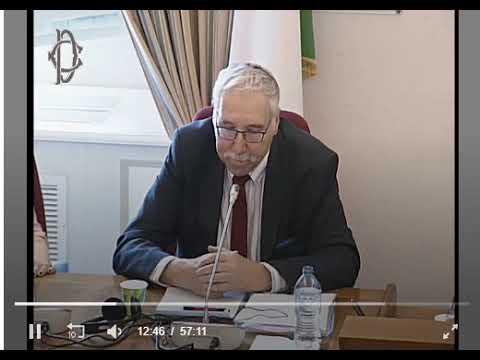 Prof. Gerald Steinberg, Italian Parliament, June 12, 2019 ITALIAN