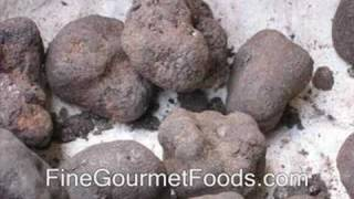 What is a Truffle?