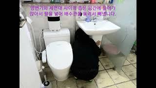 화장실 기둥형 세면대 배수관 청소하는 법 - 팝업, 팝…
