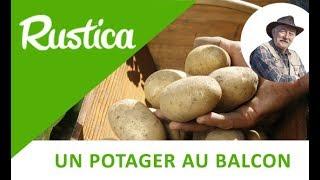 Repeat youtube video Des pommes de terre sur le balcon