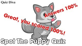 Spot The Puppy Quiz Answers 100%