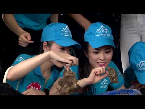 Phóng sự Đồng hành Hoa hậu Biển Việt Nam 2016 Tập 7