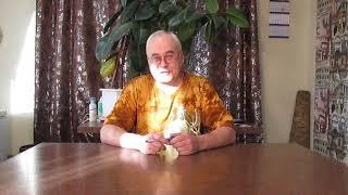 Книга Самогон Саныча на AMAZON