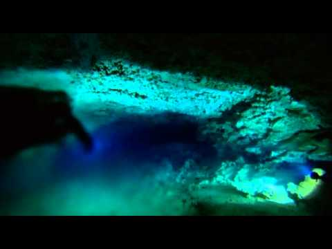 bbc planet earth episode 4 caves the halocline youtube