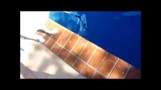 プールに落ちた体長60cmのトカゲ ウォータードラゴン.wmv thumbnail