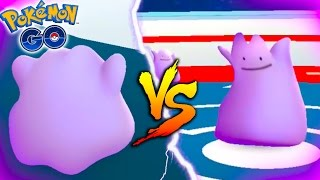 DITTO V.S. DITTO GYM BATTLE! WHAT WILL HAPPEN? How To Use Ditto!