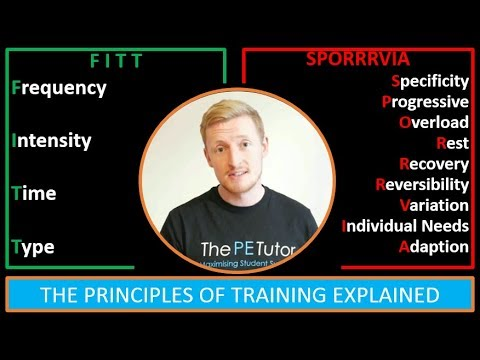 What Are The Principles of Training