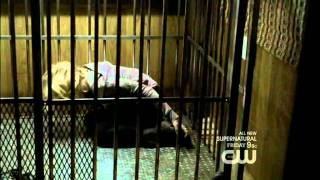 Vampire Diaries Season 2 Episode 13 - Recap