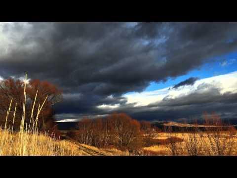 Wind at My Back (feat. Ashli Rice) - Tony Craddock, Jr.