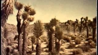 Desert Race 1964 Ron Nelson