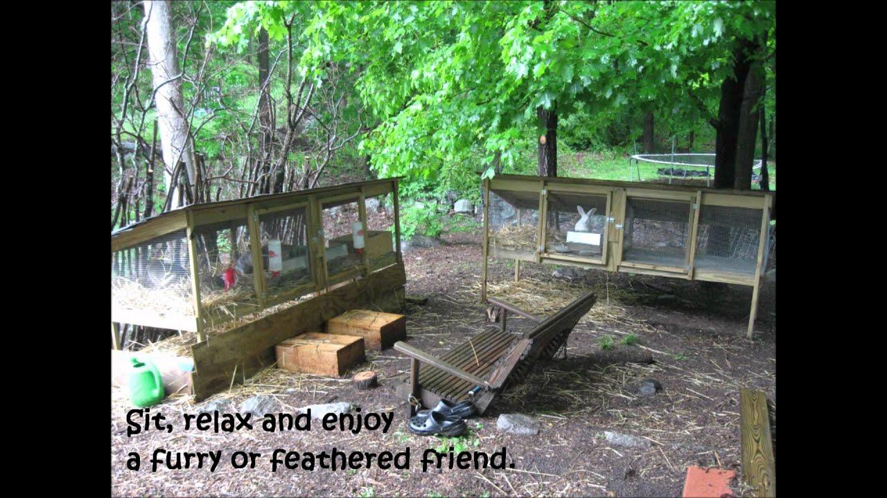 Backyard garden layout - Our Homestead Farm Youtube
