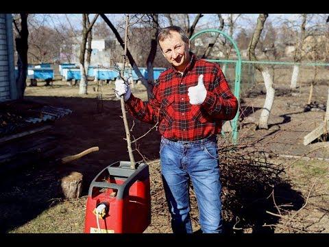 Лучший измельчитель веток | Дробилка для дерева