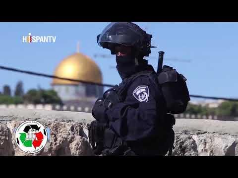 DOCUMENTAL SOBRE PALESTINA ¿COMO SE ORIGINÓ EL CONFLICTO PALESTINO-ISRAELI?